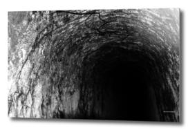Exploring Tunnels of Petrovaradin Fortress (134)