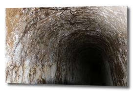 Exploring Tunnels of Petrovaradin Fortress (137)