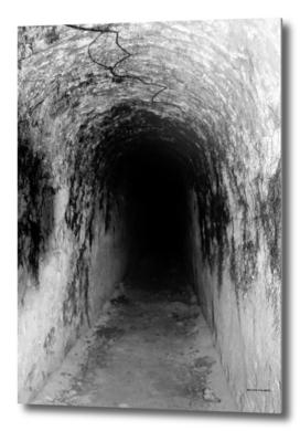 Exploring Tunnels of Petrovaradin Fortress (145)