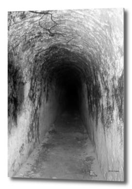 Exploring Tunnels of Petrovaradin Fortress (144)