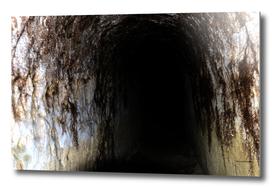 Exploring Tunnels of Petrovaradin Fortress (141)