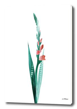 Flower Power #2