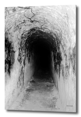 Exploring Tunnels of Petrovaradin Fortress (146)