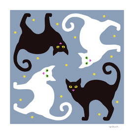 Cat Quartet