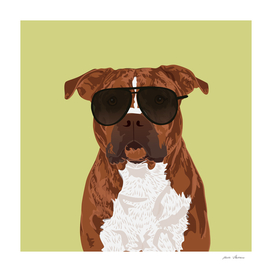 Cool Pitbull for Pitbull Parents or Pitbull Lovers