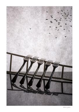 Birds flew away