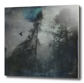 blue moon wilderness