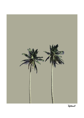 Twin Palms (warm grey)
