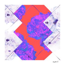 Abstract Geometric Peonies Flowers Design