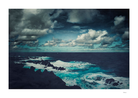 wild atlantic madeira prints