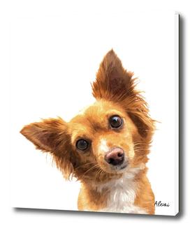 Curious Dog Portrait