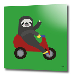 Sloth on Tricycle