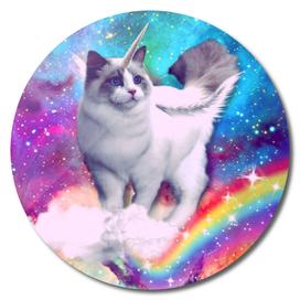 unicorn cat spece crazy cat rainow