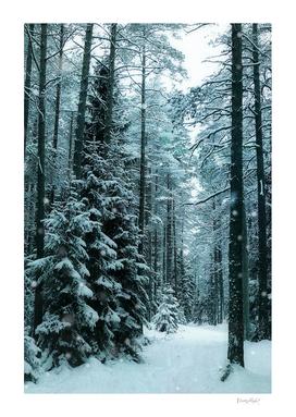 It snowed all day