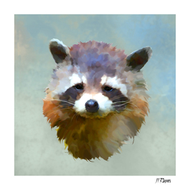 Colourful Raccoon