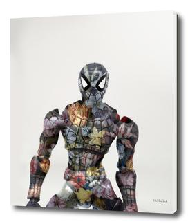 Botanical Spiderman