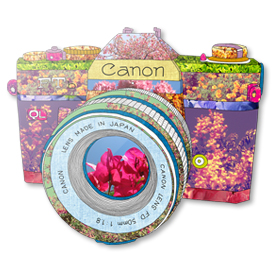 Floral Canon