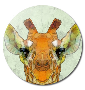 polygon giraffe