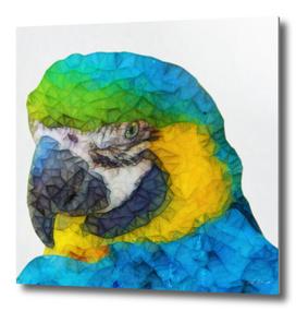 polygon parrot