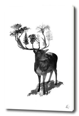 The Black Forrest Deer