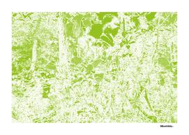 Singapore Bot. Garden 1 – Green