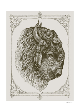 Buffalo Portrait (Bison)