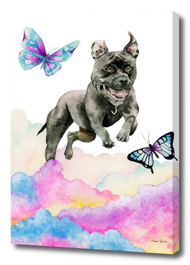 Leap! - Pit Bull Dog, Rainbow Clouds, and Butterflies