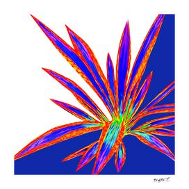 Bold Summery Sunny Agave Fringe Illustration