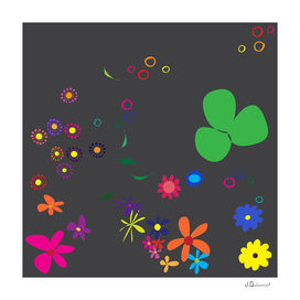 Flowers - Curioos Edition 2018