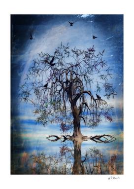 The Wishing Tree