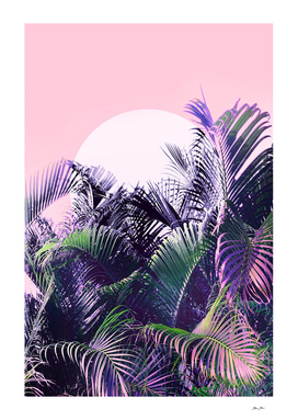 Jungle Sunrise -