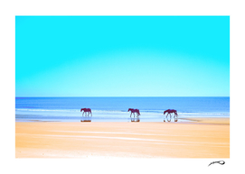 Sea of horses by #Bizzartino
