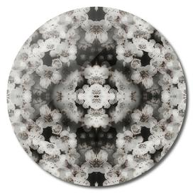 Flower mandala black and white