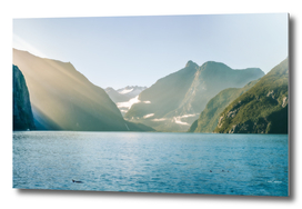 Sun rays and dolphins on a foggy morning at Milford Sound