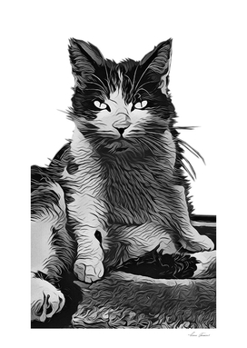 SMALL NAUGHTY CAT
