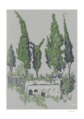 A cypresses.