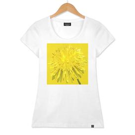 Dandy Yellow