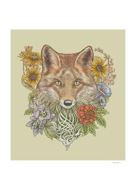 The Fox Garden
