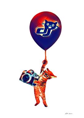 dJ CAT T