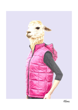 Fashionable Llama Illustration
