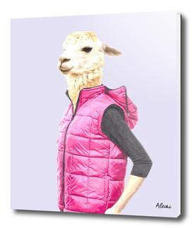 Fashionable Llama Illustration