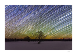 La Patrie Tree and Star Trails