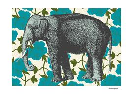 Elephant Floral Aqua