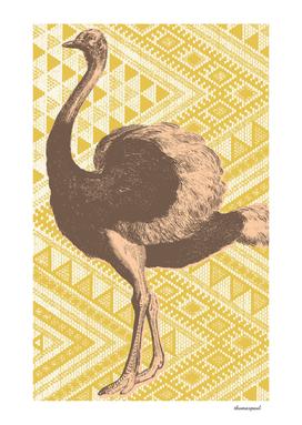Bazaar Ostrich Gold