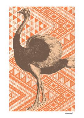 Bazaar Ostrich Orange