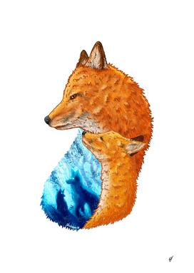 Serene Foxes