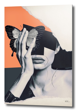 collage art / butterfly