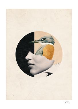 collage art / bird
