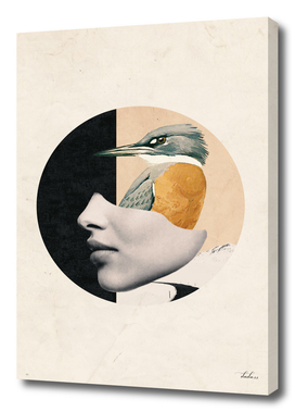 collage art / bird