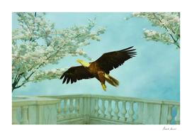 Springtime Eagle